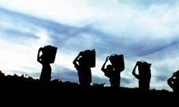 PREPORUČUJEMO VINA: KIŠ, BIKICKI, JOVIĆ, TASCA D'ALMERITA